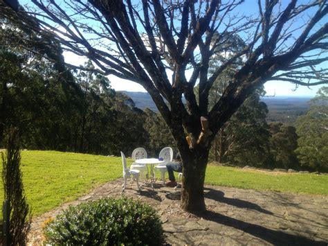 Mt Tomah Botanic Gardens The Jungle Lodge Mount Tomah Botanic Garden Sydney