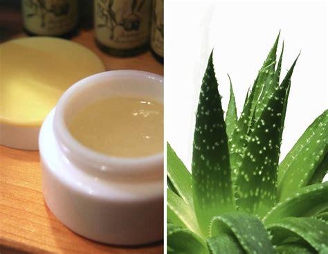 gel per unghie fatto in casa gel d aloe vera fatto in casa rimedio naturale per pelle