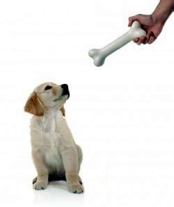 Mainan Anjing Bentuk Tulang membuat mulut anjing sehat dengan tulang anjing sahabat