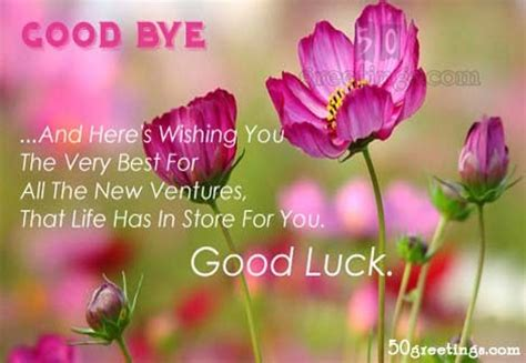 best wishes quotes for farewell quotes pinterest