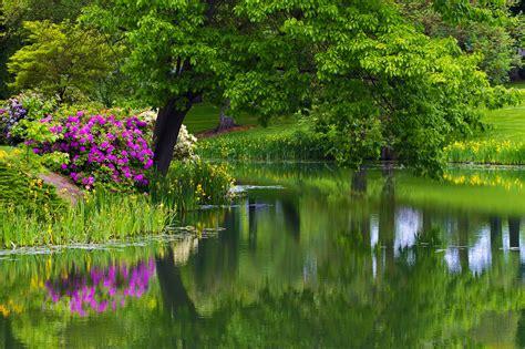 beautiful images beautiful park 1636632