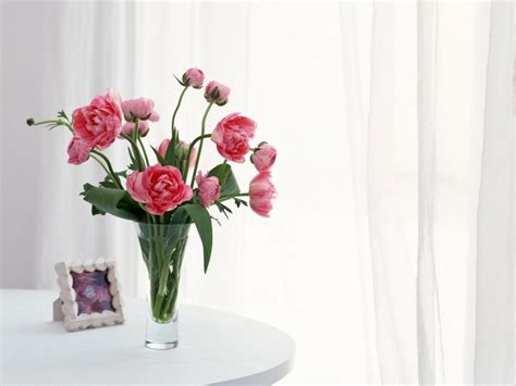flowers on table vase with fresh flowers www imgarcade com online image
