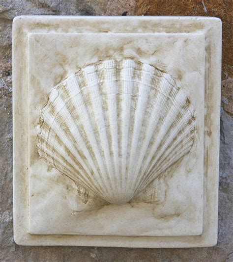 clam shell wall tile garden wall plaques buy sea shell