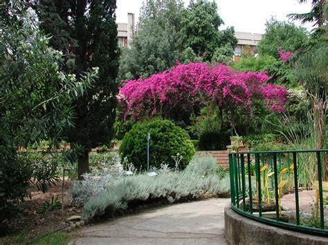 giardino botanico bari museo orto botanico dell universit 224 degli studi di bari