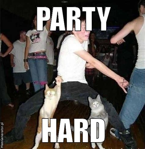 Party Meme - party hard meme quotes
