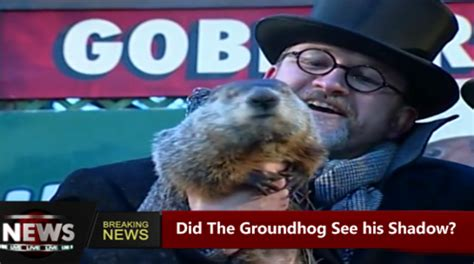 groundhog day insurance mm insurance news 2 3 17