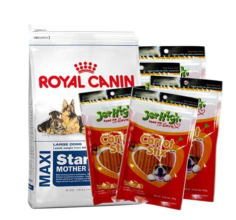 Royal Canin Maxi Starter And Babydog 4kg royal canin maxi starter 4 kg with jerhigh carrot stick treats dogspot pet