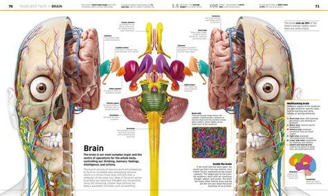 Knowledge Encyclopedia Human Body Dk Knowledge