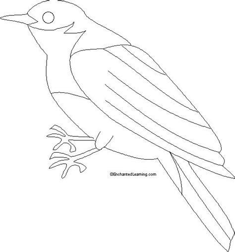 Eastern Bluebird Coloring Printout Enchantedlearning Com Bluebird Coloring Page