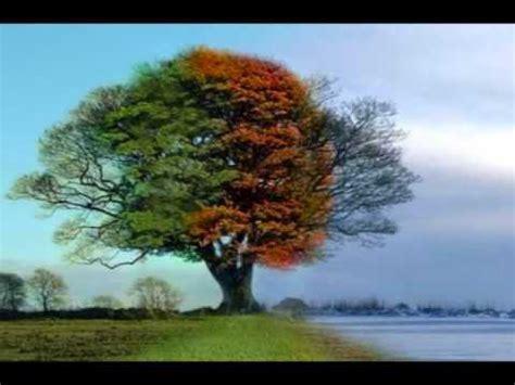 tree seasons come seasons 1848691815 every season by nichole nordeman youtube