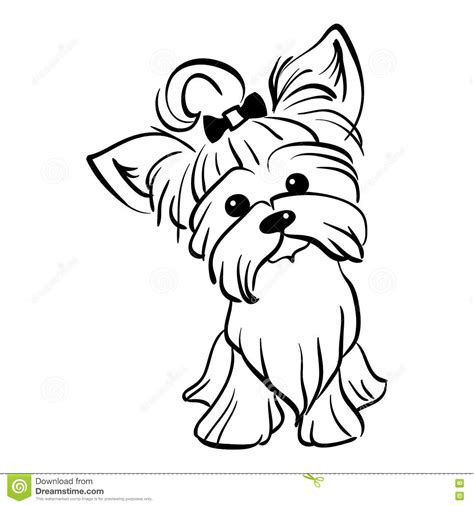 yorkie coloring pages coloring pages yorkie free image