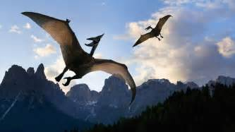 19th Century Pterodactyls Dinosaur Home what is the wingspan of a pterodactyl reference com