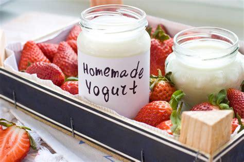 diy yogurt sheet for yogurt ready nutrition