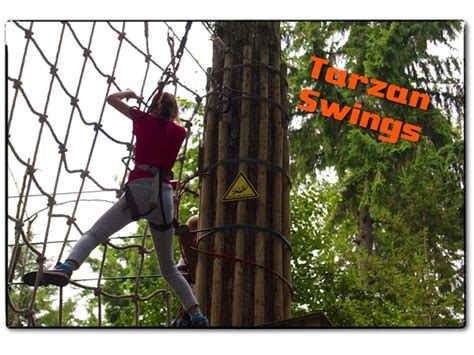 go ape tarzan swing go ape the family guide what you need to know for tree