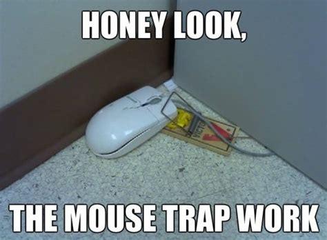 Mouse Memes - funny meme pictures mouse trap memes