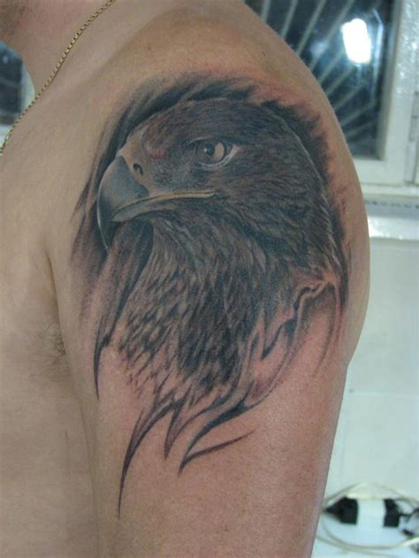 hawk tattoos