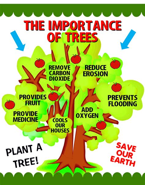 top 10 pictures of trees for day make a importance of trees poster arbor day poster ideas