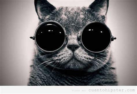 imagenes hipster tumblr blanco y negro blanco y negro cu 225 nto hipster