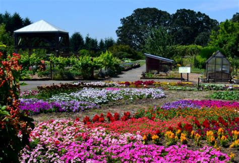 Gardening In Oregon 5 Beautiful Gardens To Visit This In And Around