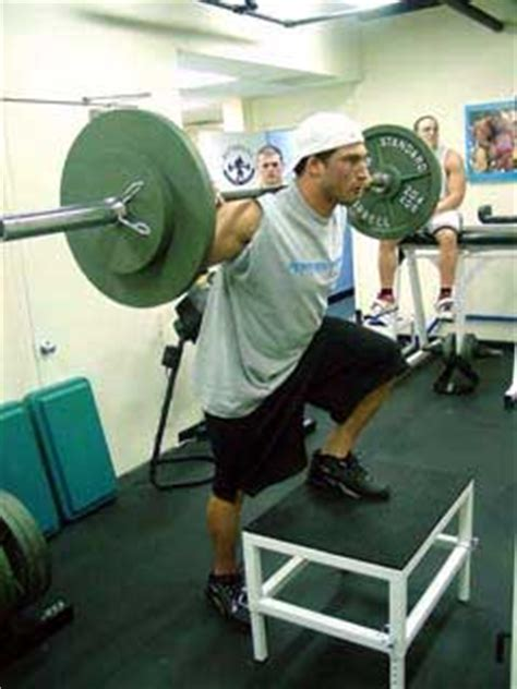 joe defranco bench press westside for skinny bastards a modified lifting program