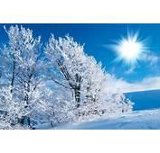 Wallpaper Snow Scenes  Best 4k