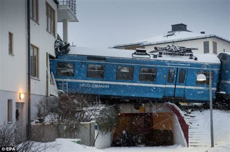 how to house train a 2 year old dog female cleaner steals a train and drives it into apartment house in exclusive part of