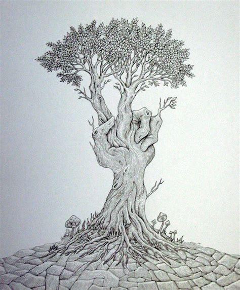 drawings of trees tree drawing 9 tree drawings