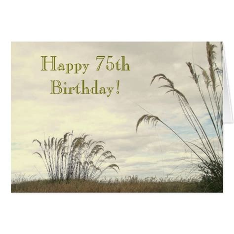 75th Birthday Cards Messages 75th Birthday Card Zazzle