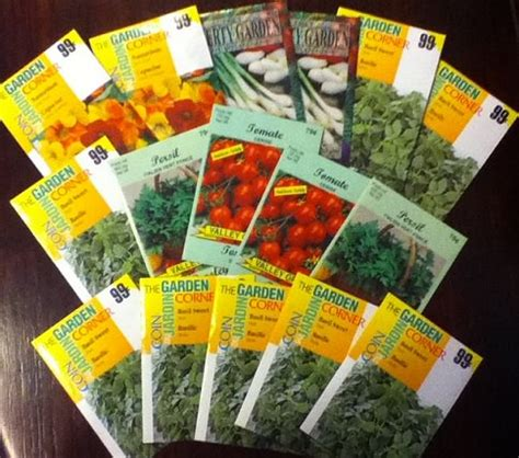 How To Start Your Spring Garden Using Odd Containers Where To Buy Seeds For Vegetable Garden