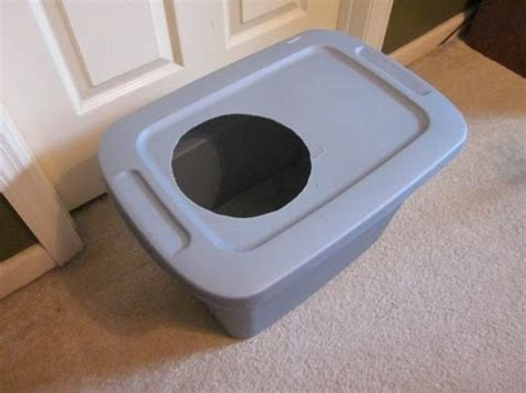 how to keep out of litter box how to keep out of litter box peek a boo latch doovi