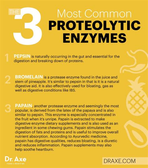 how to reduce 5ar enzime in your body proteolytic enzymes reduce inflammation and boost immunity