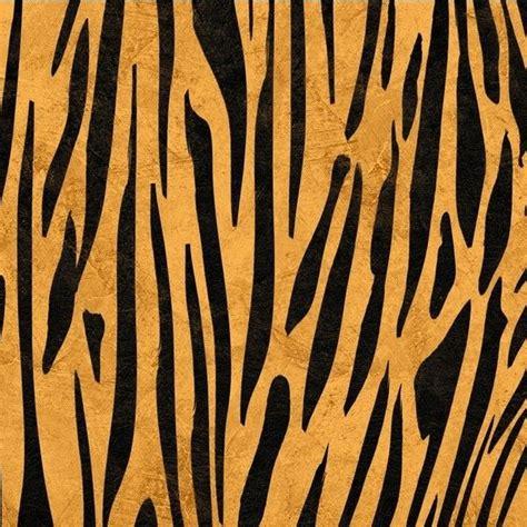 Tiger Essay by Best 25 Tiger Print Ideas On