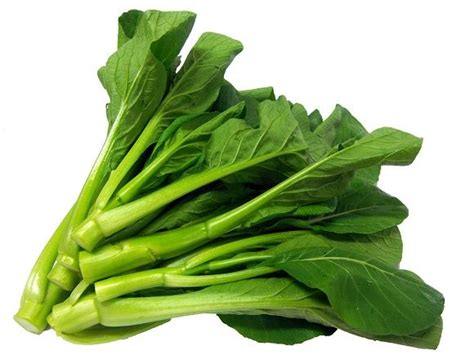 manfaat sawi hijau faktaherbal