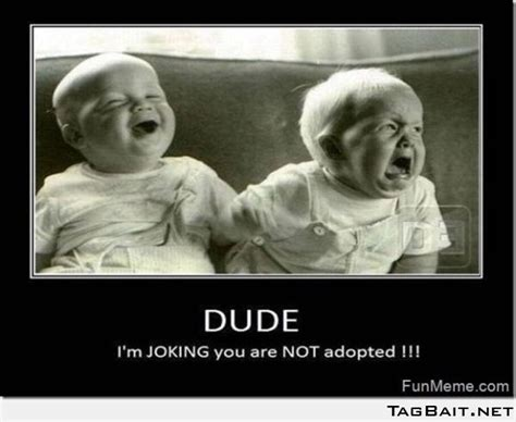 Funny Sibling Memes - 17 best images about funny baby memes on pinterest funny
