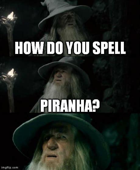 Spell Me Meme - spell me meme 100 images that would be great meme
