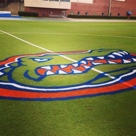 Florida Gators Re Chomp As National Chions by Die Besten 17 Ideen Zu Florida Gators Fu 223 Auf