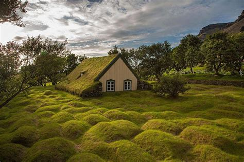 living arc green roofs earth roof house green roof architecture modern house