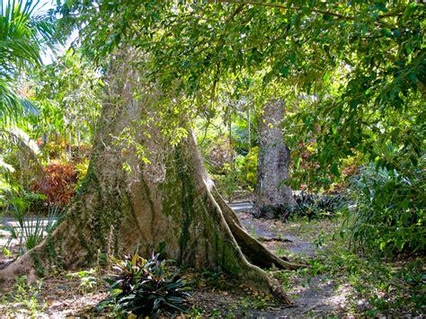 Botanical Gardens Fort Lauderdale Flamingo Gardens Florida Hikes