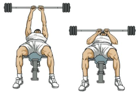 decline bench close grip triceps press work it out supersets sprint 2 the table