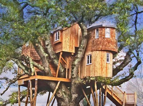 tree house homes how about staying in these spectacular treehouses