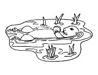otter coloring pages preschool otter coloring pages and printable activities