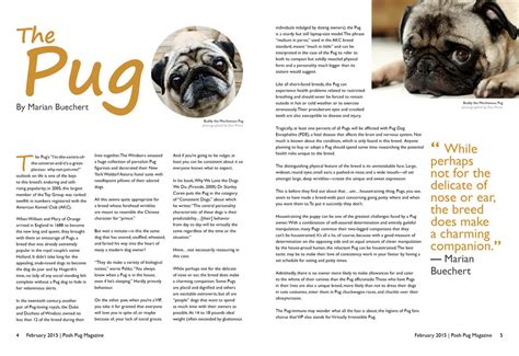pug magazine posh pug magazine text based article spread by denzel94 on deviantart