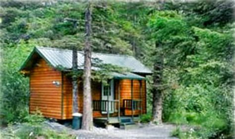 Cing Cabins Wisconsin by Rent A Cabin For 100 Images Smoky Mountains Pet