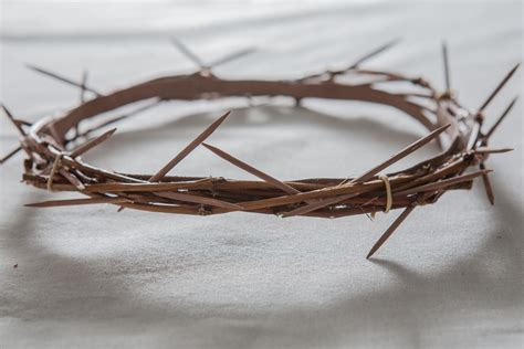 craft crown of thorns how to make a crown of thorns for an easter play crown