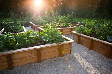 Above Ground Planter Boxes by 25 Lovely Diy Garden Pathway Ideas Amazing Diy Interior
