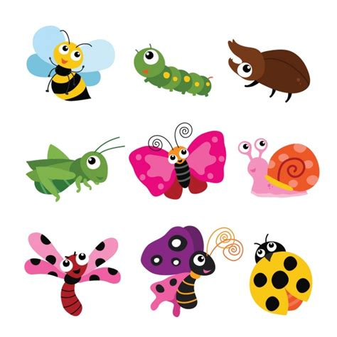 imagenes de insectos vectores coloured insects collection vector free download