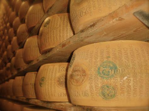 parmigiano reggiano a trip to a parmigiano reggiano factory in italy