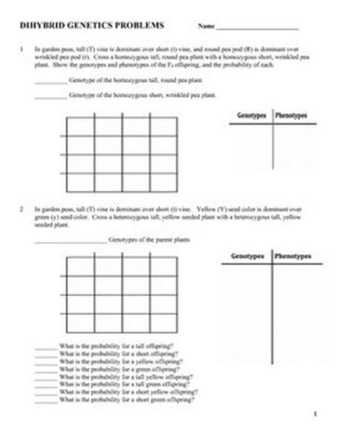 Dihybrid Cross Practice Worksheet by Genetics Dihybrid Two Factor Practice Problem Worksheet