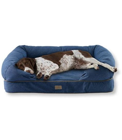 ll bean pet bed dog couches dog beds and couch on pinterest