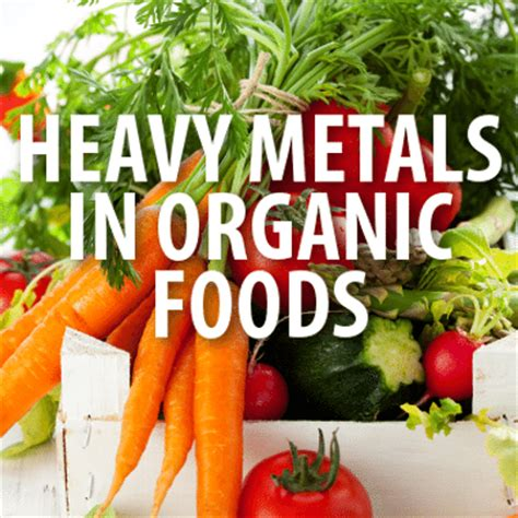 protein heavy foods dr oz heavy metals in organic foods rice protein